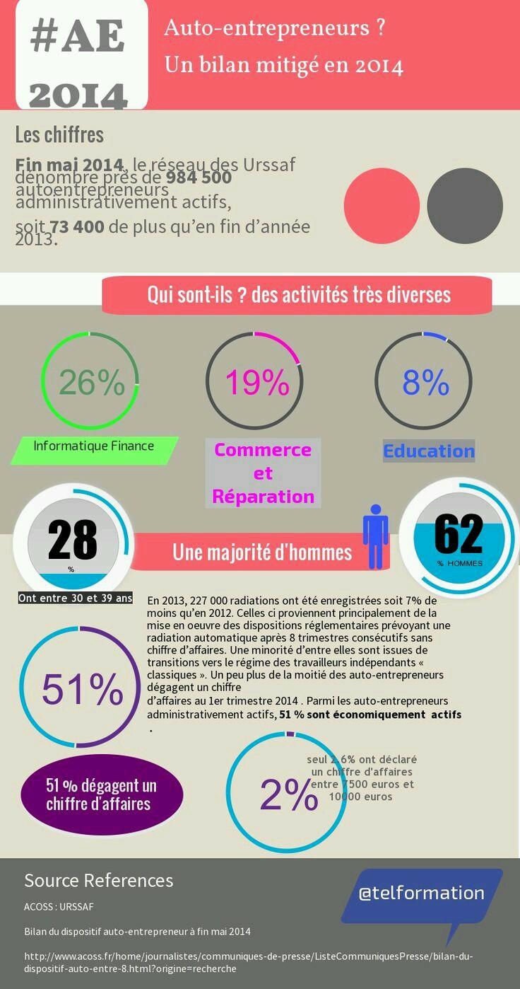 Infographie qui sont les auto-entrepreneurs?