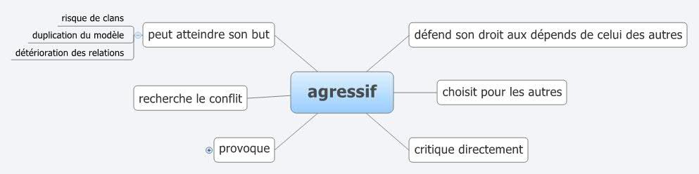 Définition de l'agressif via @sophieturpaud